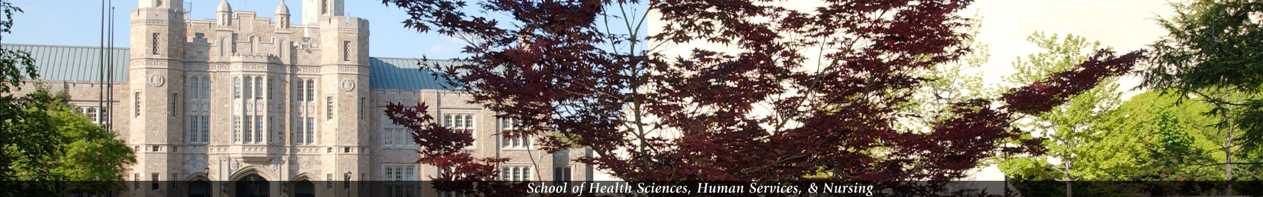 Health Sciences, Human Services, Nursing