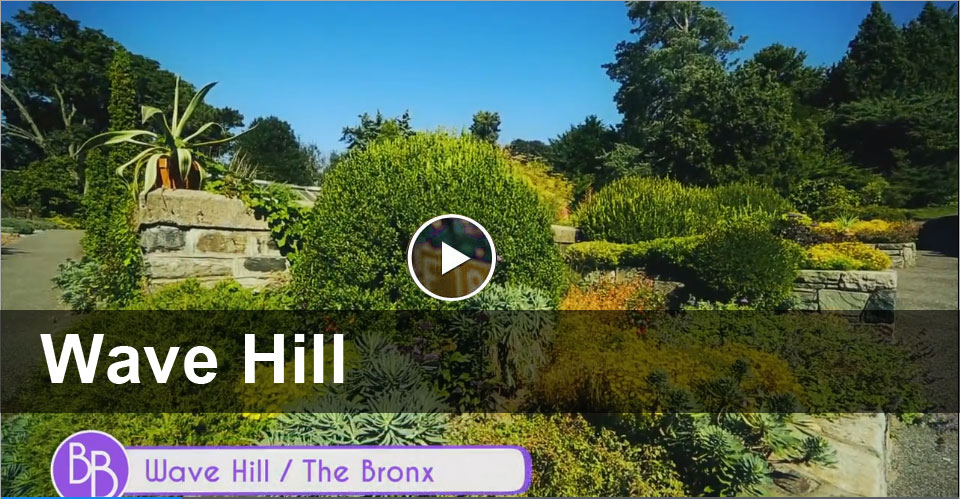 Best of the Bronx: Wave Hill