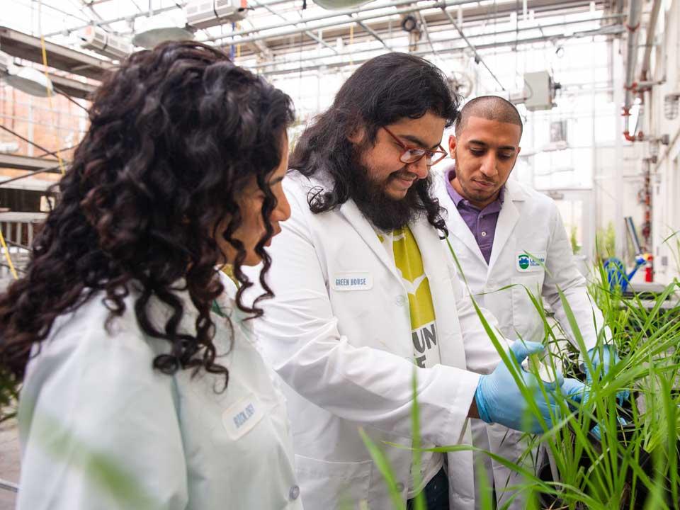 Lehman and New York Botanical Garden Celebrate Innovative Partnership