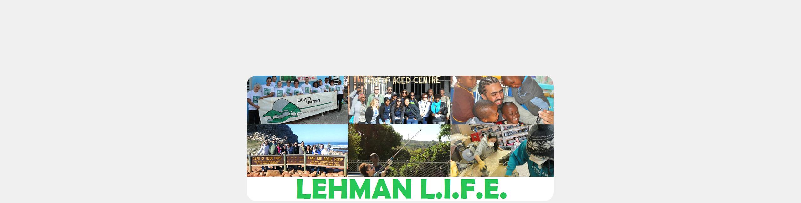 Lehman LIFE