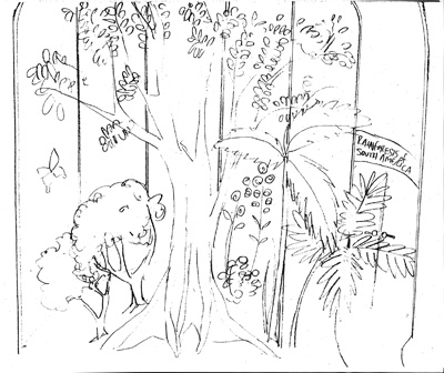 Pics For > Tropical Rainforest Drawing